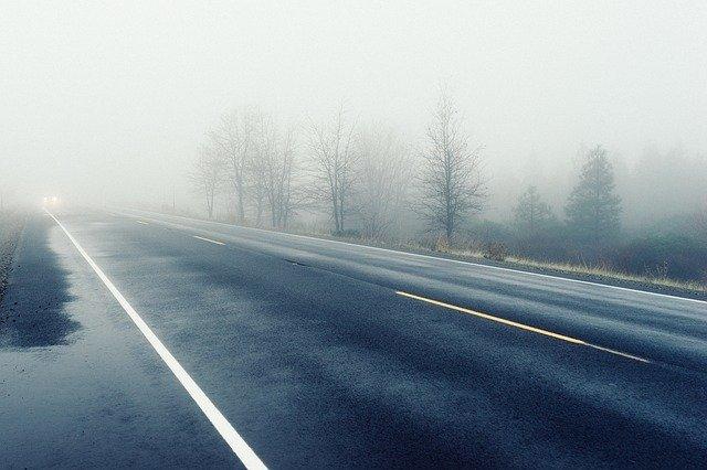 mlha u silnice